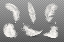 Vector 3d Realistic Different Falling White Fluffy Twirled Feather Set Closeup Isolated On Transparency Grid Background. Design Template, Clipart Of Angel Or Bird Detailed Feather In Various Shapes