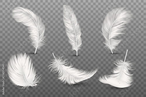 Fotografía Vector 3d Realistic Different Falling White Fluffy Twirled Feather Set Closeup Isolated on Transparency Grid Background