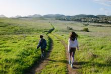 Rear View Of Siblings Walking On Trail Amidst Grassy Field