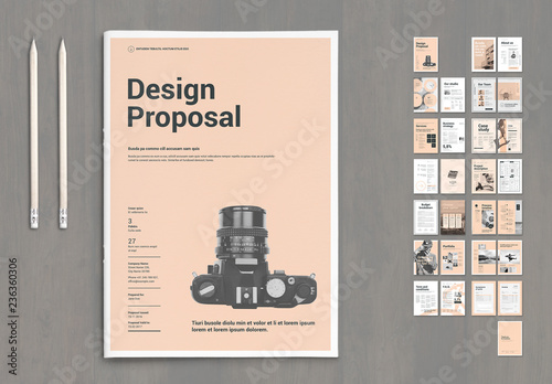 Design Proposal Layout With Pale Pink Elements This
