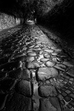 Wet Paving Stones, Via Appia A...