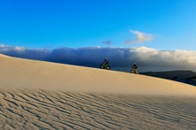 Cycling Tour With Fatbikes At Die Plaat Beach, Nature Reserve, De Kelders, Gansbaai, Western Cape, South Africa, Africa
