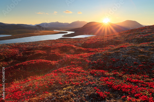 Poster Bruin Autumn landscape with mountain, valley and lagoon views. The slopes of the hill are covered with scarlet arctous. Amazing sunset with sun rays over the mountains. Mount Inakhpak, Chukotka, Russia.