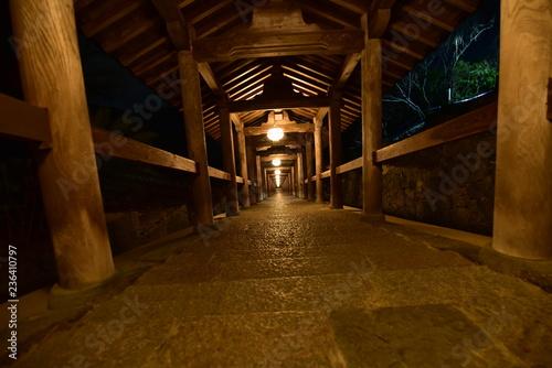 Fotografie, Obraz  寺の門の夜景と紅葉