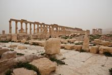 Ruins Of Ancient Palmyra. Syri...