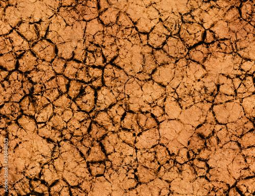 Fényképezés dry cracked ground texture