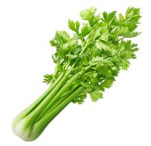 Fresh Celery Isolated On White...