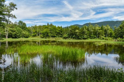Fototapeta Reflections on the lake_Norikura Kogen obraz na płótnie