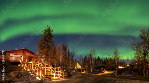 Poster Aurore polaire A log cabin in pine forest under Aurora borealis at YellowKnife,