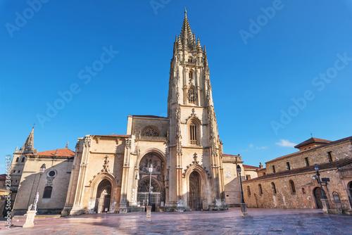 Obraz Oviedo cathedral, Asturias, Spain. - fototapety do salonu