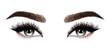 Woman eyes with long eyelashes. Hand drawn watercolor illustration. Eyelashes and eyebrows. Design for eyelash extensions, microblading, mascara, beauty salon, cosmetics, makeup artist. Black eyes.
