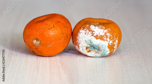 Fotografía  Mandarins spoiled and worse with mold