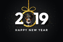 Happy New Year With A Dog 2019
