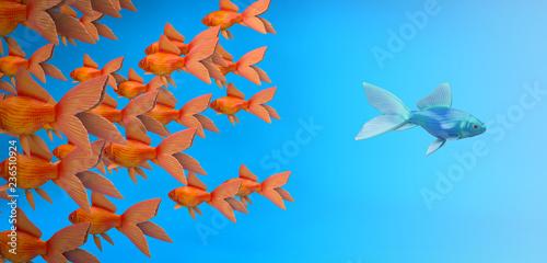 Fototapeta Intelligenter Fisch schwimmt gegen den Strom