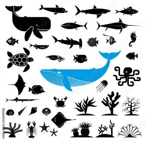 Fototapeta premium Duży zbiór geometrycznie stylizowanych ikon zwierząt morskich. Piktogram ikony reprezentujące podwodny świat. Duże ryby, ryby akwariowe, wodorosty, skorupiaki, muszle.