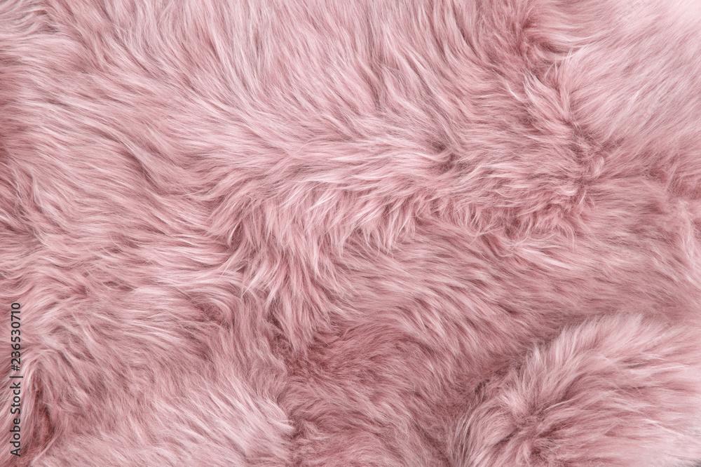Fototapeta Pink sheep fur Natural sheepskin background texture