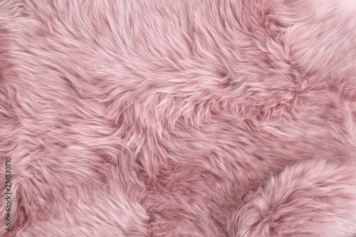 Pink sheep fur Natural sheepskin background texture Fototapeta