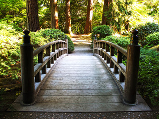 Fototapeta Japoński Bridge in Japanese Garden