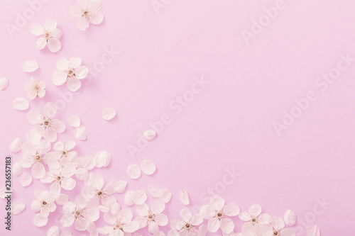 Keuken foto achterwand Bloemen cherry flowers on paper background