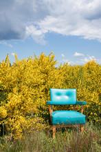 Bright Blue Vitage Chair Again...