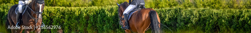 Acrylic Prints Horseback riding Beautiful girl on sorrel horse in jumping show, equestrian sports. Light-brown horse and girl in uniform going to jump. Horizontal web header or banner design. Copy space for your text.