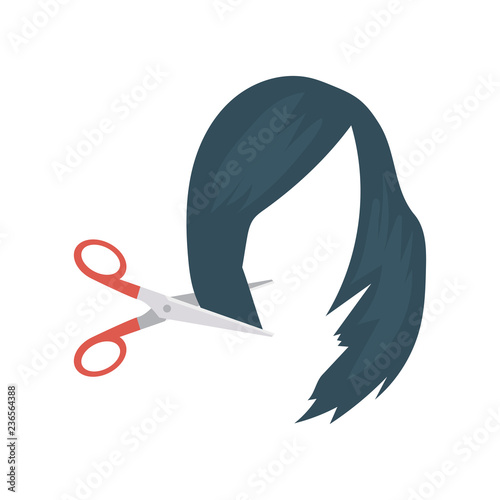 hairdresser   hairstyle   cutting