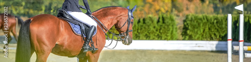 Fotobehang Paardrijden Beautiful girl on sorrel horse in jumping show, equestrian sports. Light-brown horse and girl in uniform going to jump. Horizontal web header or banner design. Copy space for your text.