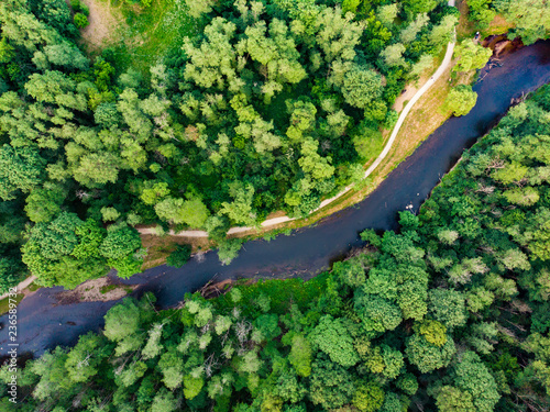 Foto op Plexiglas Groene Aerial top down view of summer forest with Vilnele river winding among the trees.