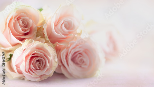 Photo  Flower composition with roses.