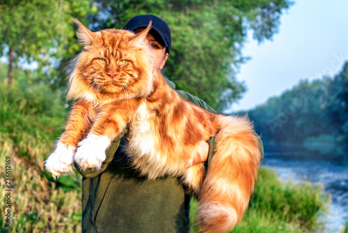 A girl holding in arms a gigantic maine coon cat in forest in summer Wallpaper Mural
