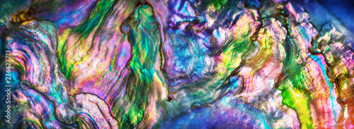 Türaufkleber Makrofotografie High magnification macro of nature texture pearl shell. Rainbow colors abstract background close-up.