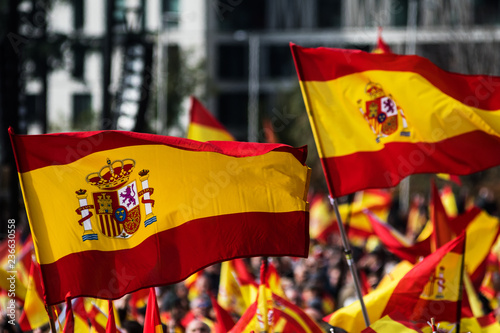 Fotografie, Obraz Spanish Flags waving during a protest for the unity of Spain