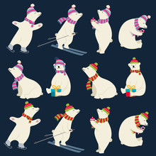 Dressed Polar Bears Collection...