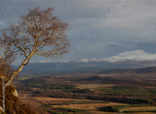 Photo view of the cairngorms mountain range from the east towards aviemore during a wi
