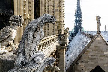Stone statues of chimeras overlooking the rooftop and spire of Notre-Dame de Paris cathedral from the towers gallery.