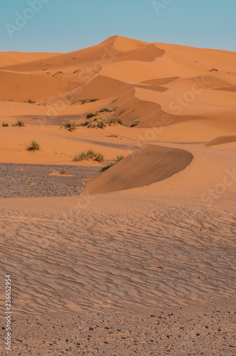 Valokuva  A line of orange sand dunes rise up from the rocky desert floor at the edge of t