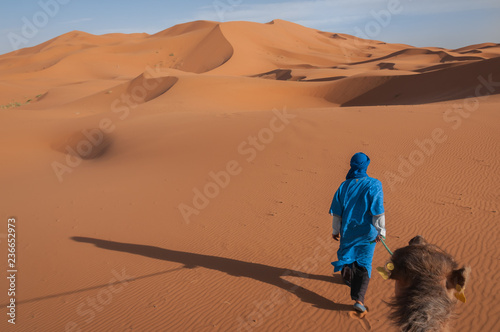 A man dressed in the blue of the Saharan Tuareg leads a camel into a landscape of windswept orange dunes in Morocco Billede på lærred