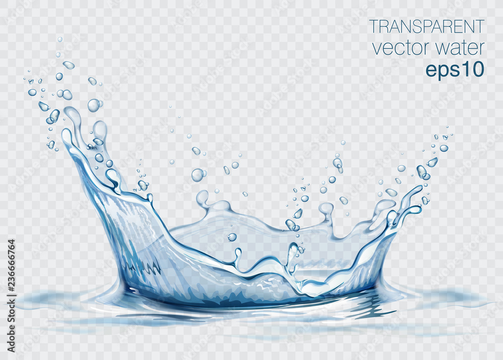 Fototapeta Transparent vector water splash and wave on light background