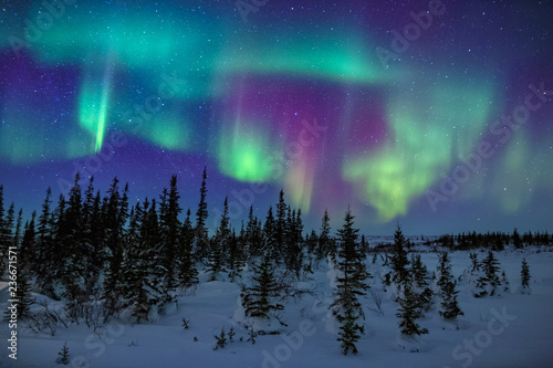 Photo sur Toile Aurore polaire Colorful Aurora Borealis Display