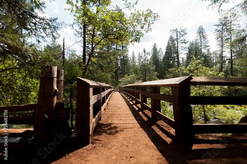 Keuken foto achterwand wooden bridge in the forest