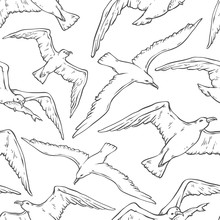 Vector Seamless Pattern Flying Seagulls. Bird Gull Angler Black White Monochrome Outline Sketch Illustration Isolated On White Background For Design On Marine Theme.