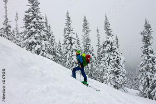 Fotografia Male skier freeride skitur uphill in snow in winter forest