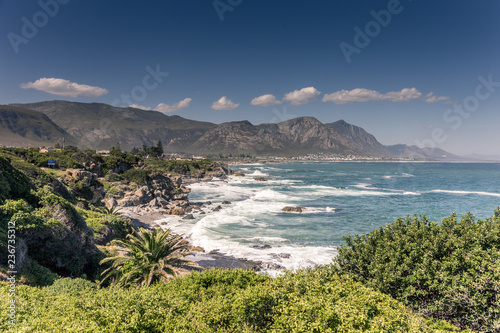 Poster Afrique du Sud Hermanus in Südafrika
