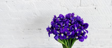 Bouquet Of Flowers Iris On Whi...