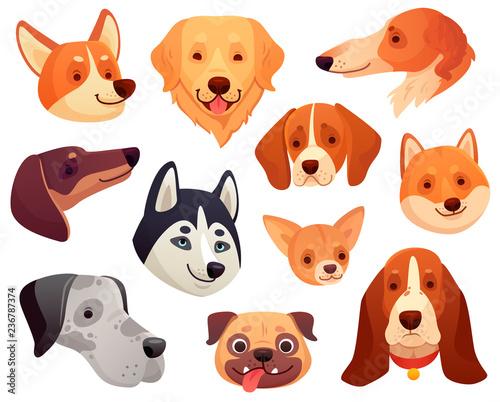 Photo Cartoon dog head
