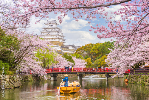 Photo sur Toile Fleur de cerisier Himeji Castle, Japan in Spring