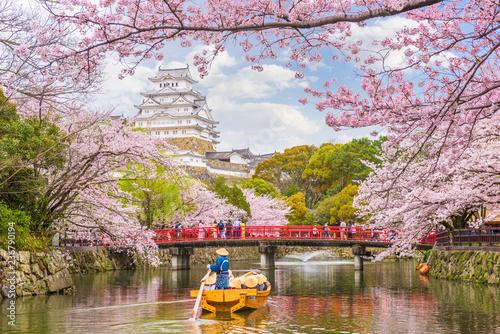 Ingelijste posters Kersenbloesem Himeji Castle, Japan in Spring