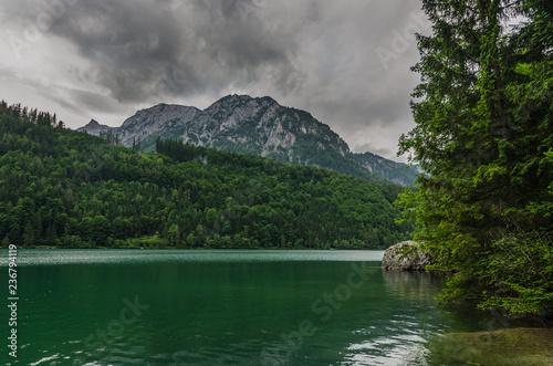Plakat jezioro z drzewami i górami