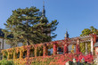 Eltviller Rheinpromenade mit herbstlich gefärbtem Efeue an der kurfürstlichen Burg und dem Kirchturm der Pfarrkirche St. Peter und Paul