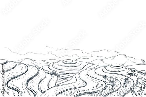 Foto auf AluDibond Reisfelder Rice terrace fields, vector sketch landscape illustration. Asian harvesting agriculture background. China rural nature